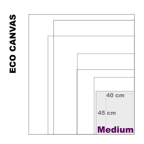Top Grade Eco Medium Canvas Print (Matte) 370+ g/m²)