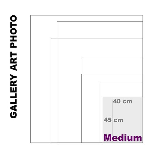 Gallery Art Medium Photo Gloss Print (310 g/m²)