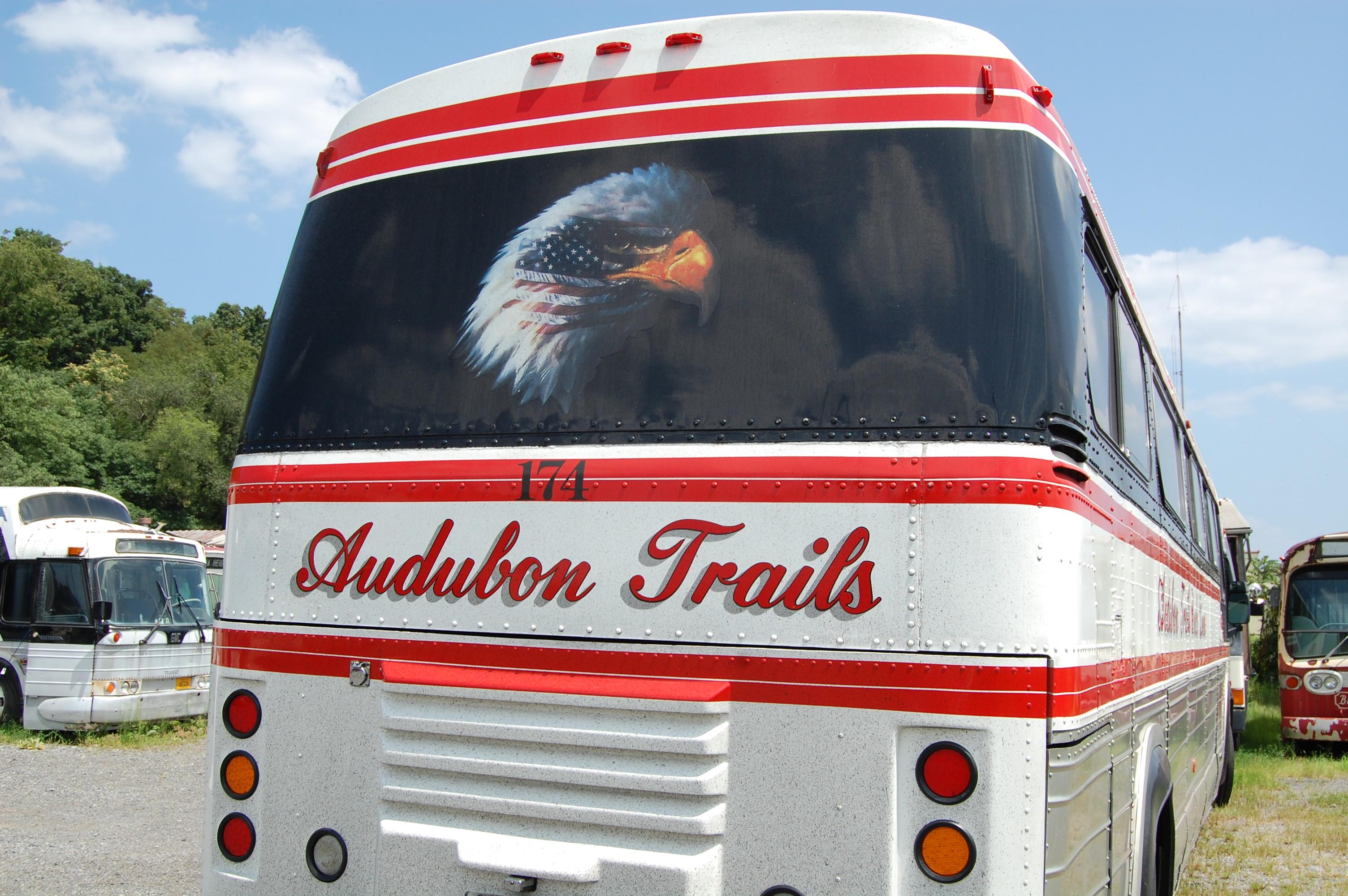 Coach 174's Eagle