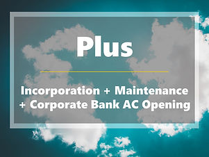 Plus - Incorporation Main and Bank.jpg