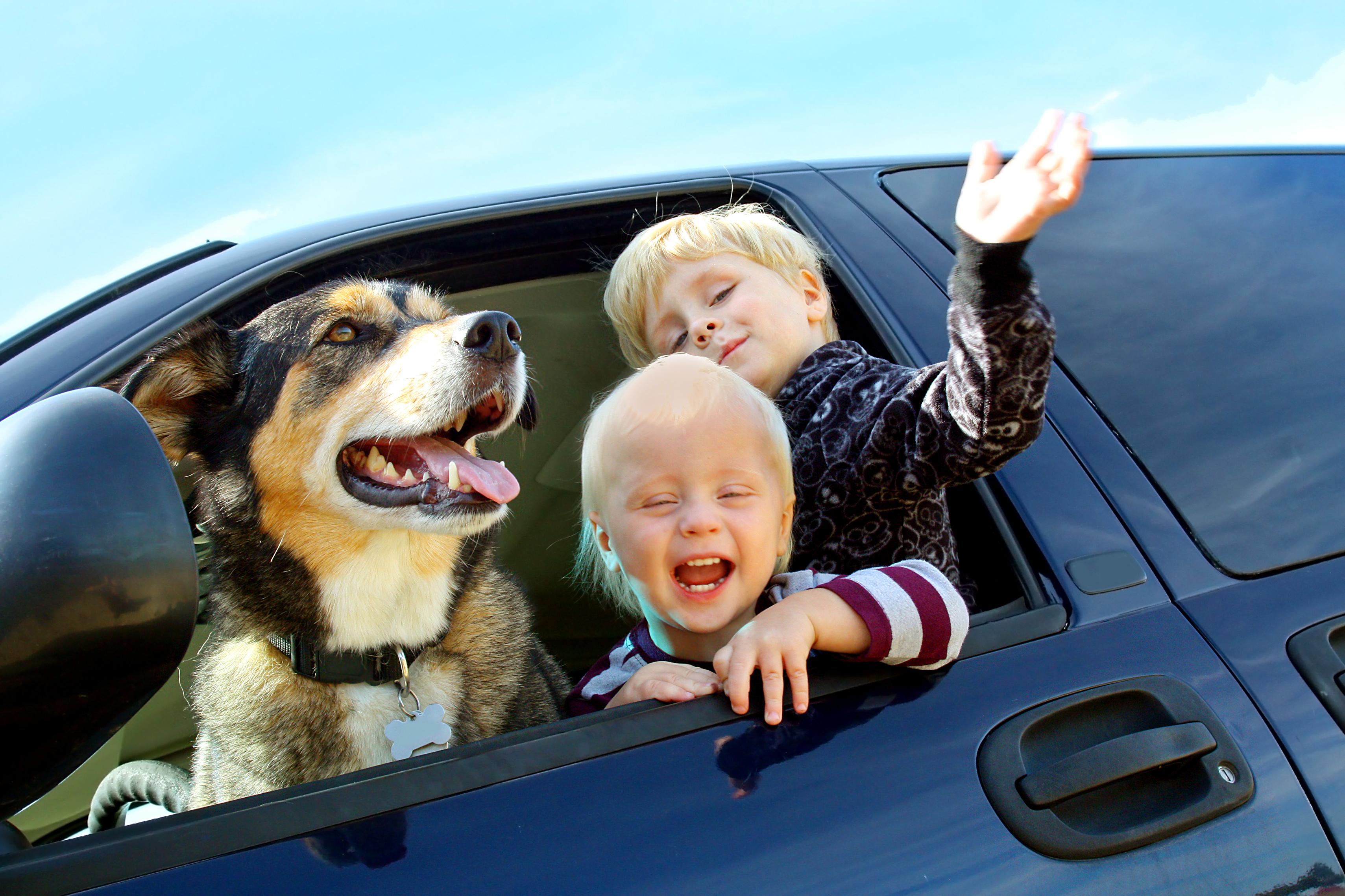 Happy dog and kids
