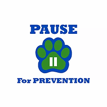 Pause Logo small on 4x4 page.webp