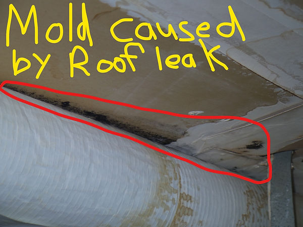 Mold Caused By Roof Leak