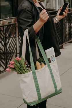 Grocery Bag (2)