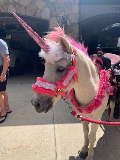 Childrens Unicorn Birthday Party