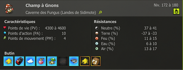 Champ a gnons.PNG