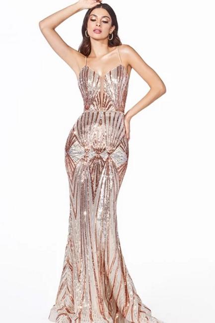 Sequined Mermaid Shape Long Dress