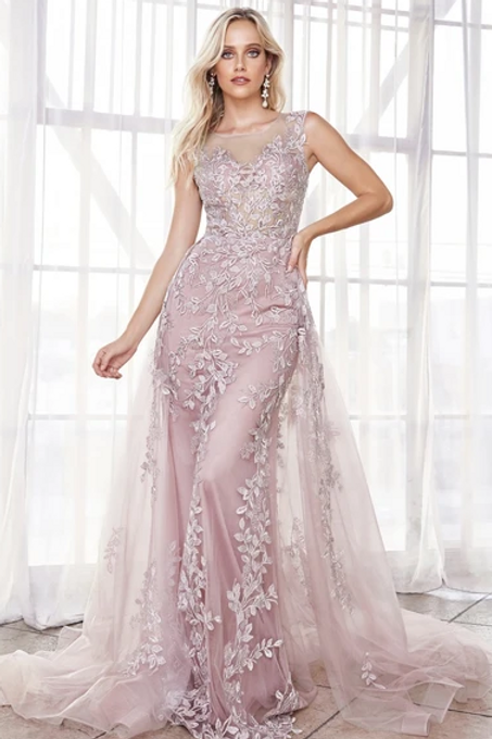 Illusion Neck A-Line Lace Dress