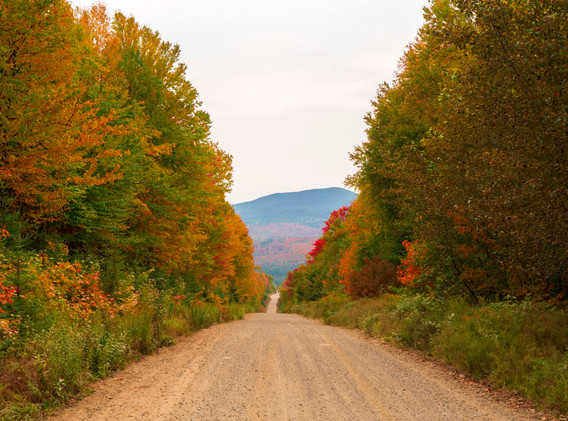 Road to Little Kennebago Lake