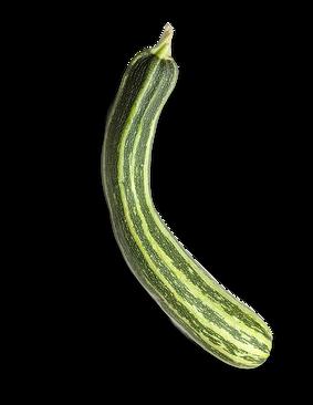 À semer en mai