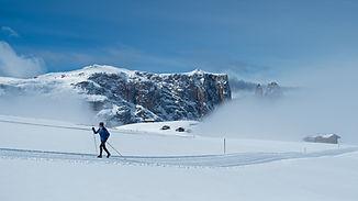 cross-country-skiing-4074099_1920.jpg