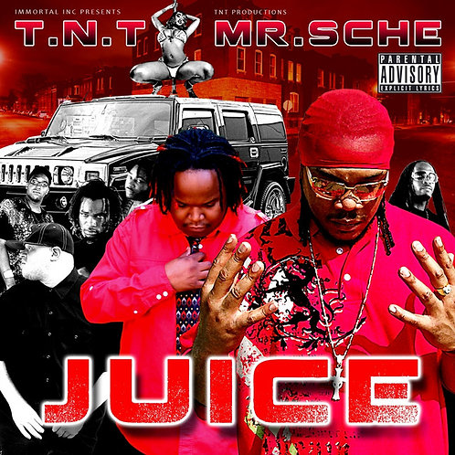 T.N.T* & Mr. Sche ‎– Juice