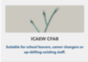 ICAEW article.png