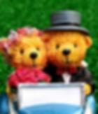 bride-and-groom-2403472_960_720.jpg