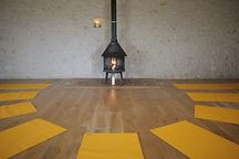 Ashtanga, Vinyassa, Scaravelli, Dynamic Flow Yoga