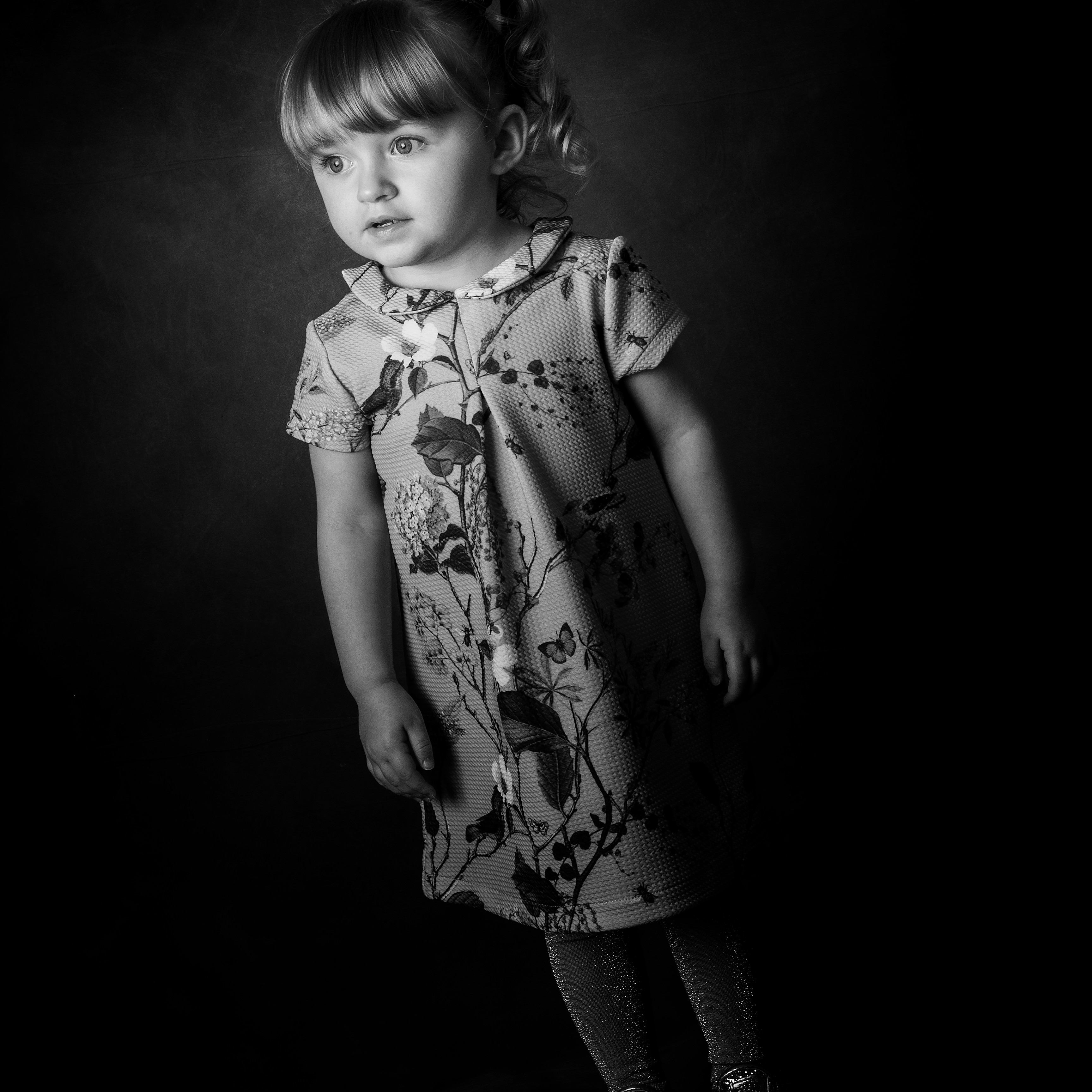 Portrait Consultation