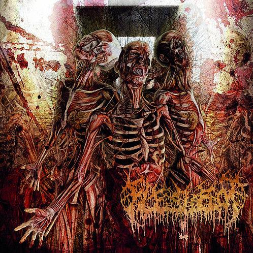 Fleshrot – Traumatic Reconfiguration
