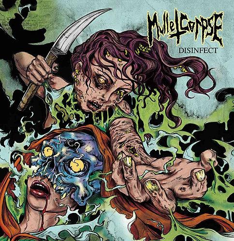 Mulletcorpse – Disinfect