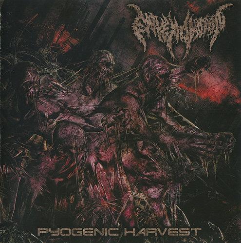 Envenomation – Pyogenic Harvest