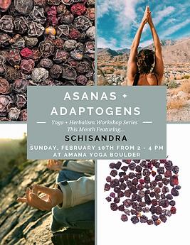 Asanas + Adaptogens-7.png