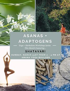 Asanas + Adaptogens-8.png