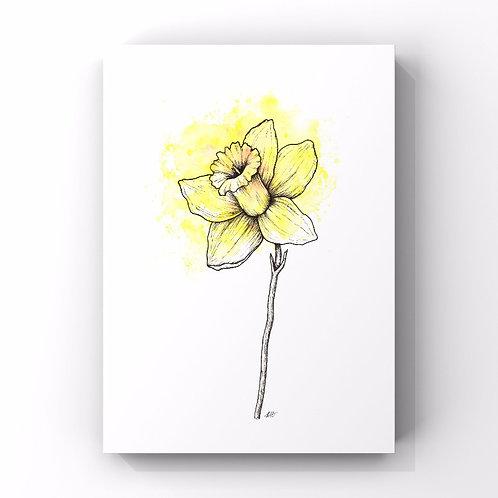 Daffodil (March's Flower)