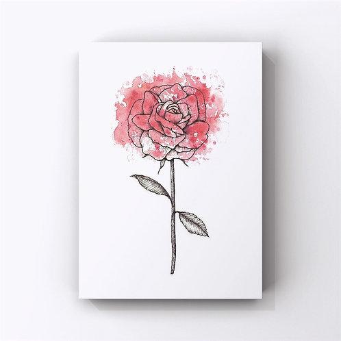 Rose (June's Flower)