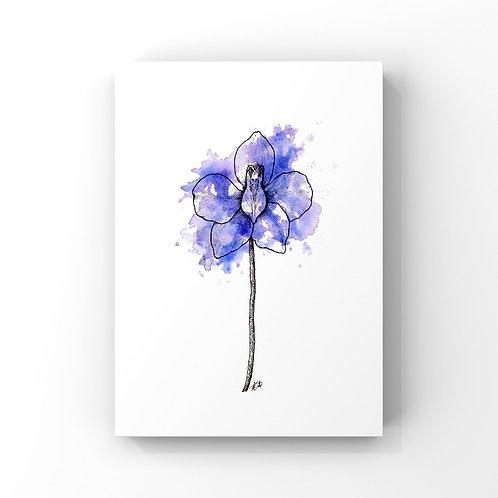 Larkspur (July's Flower)