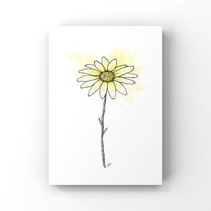 Daisy (April's Flower)