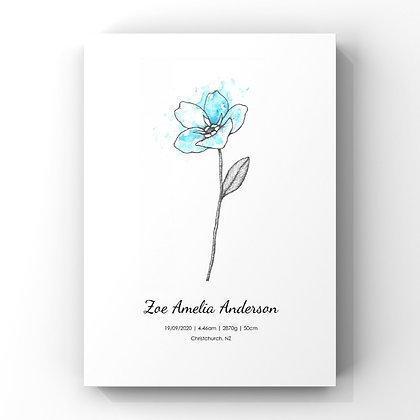 September Birth Flower Personalised Print