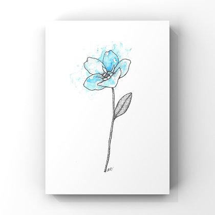 Forget me not (September's Flower)
