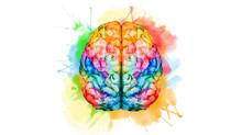 Mindfulness Meditation Can Grow Your Brain!