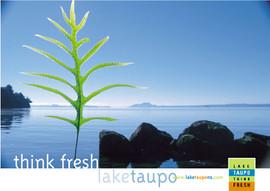 Destination Lake Taupo - Launch
