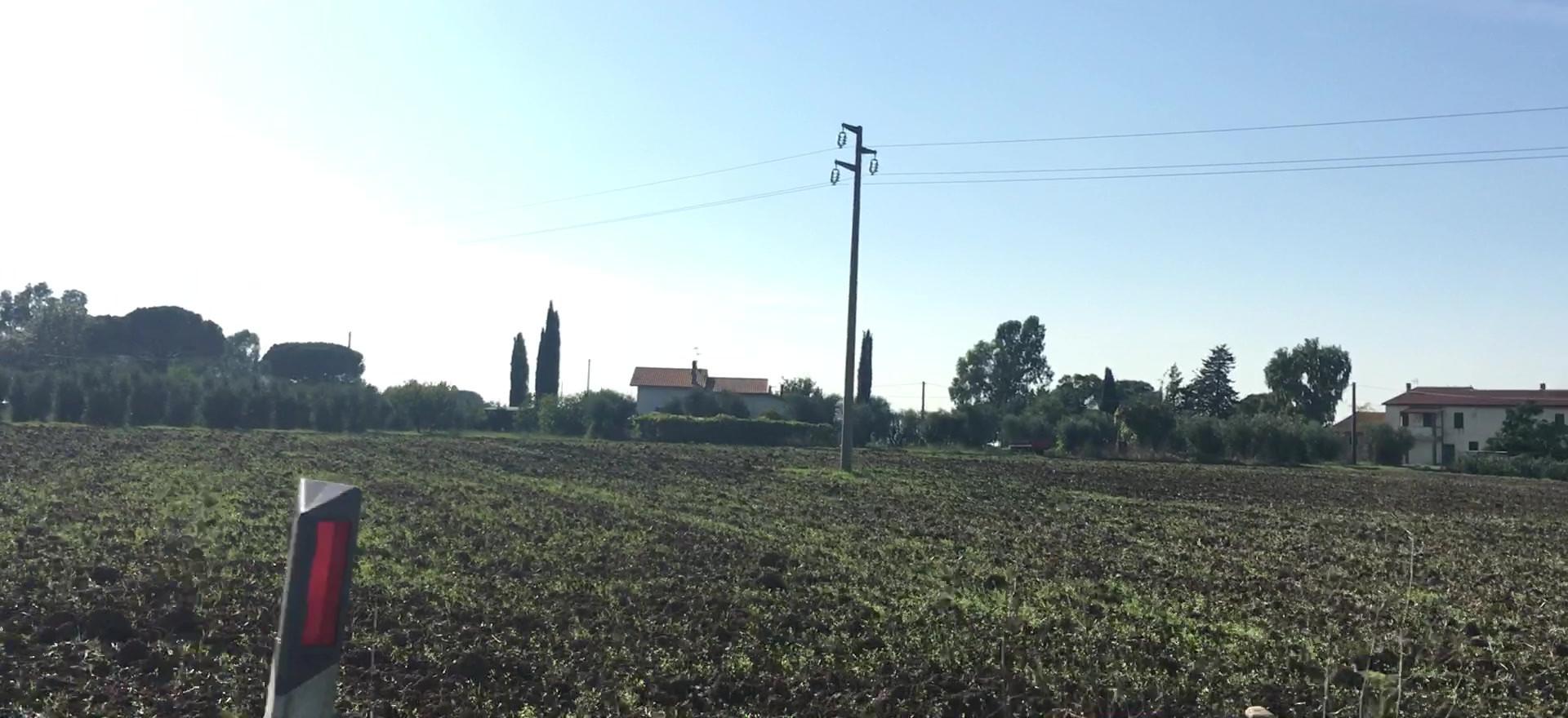 Tuscan Drives