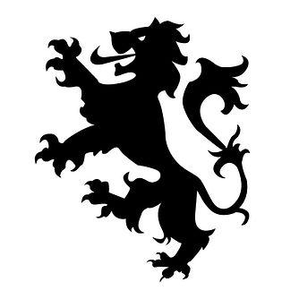 HC Lion - NetSuite.jpg