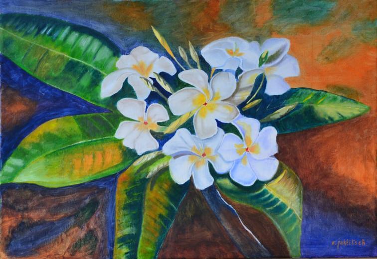 Bodegon de flores