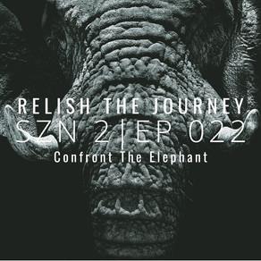 Confront The Elephant