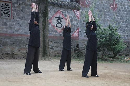 Yang Sheng Gong