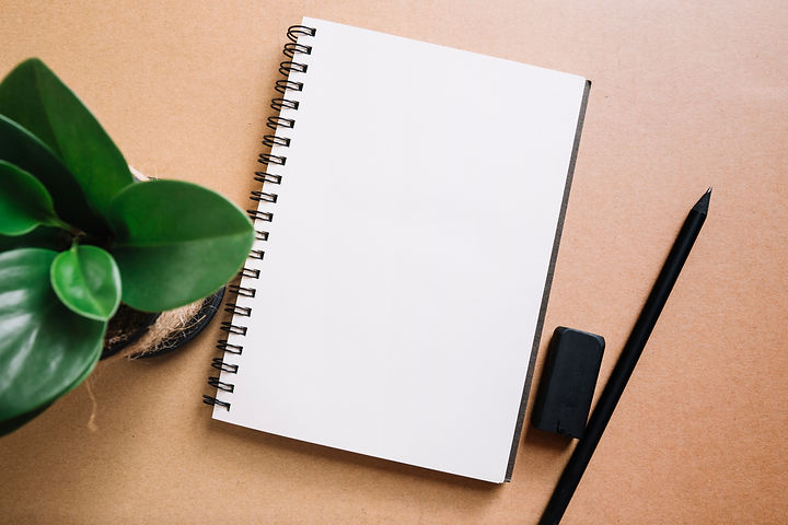 plant-and-pencil-near-notebook.jpg