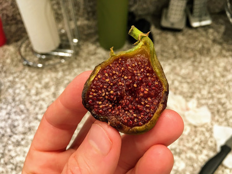 Taking an UNDER-RIPE Fig and Turning it into something SPECIAL