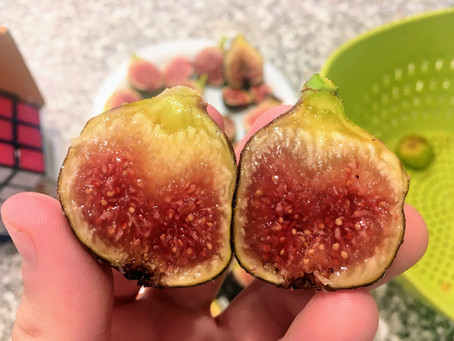 Name this Fig & Win! - Part 2