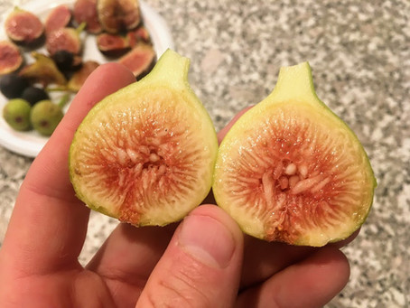 Name this Fig & Win! - Part 3