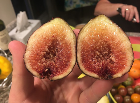 Name this Fig & Win! - Part 4