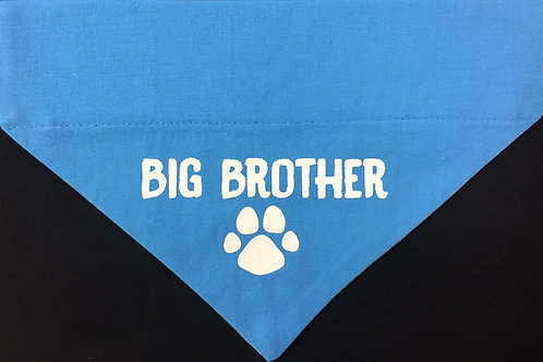 Big Brother - Light Blue