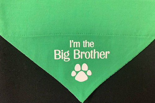 I'm the Big Brother - Green
