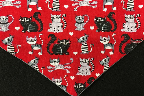 Cats on Red