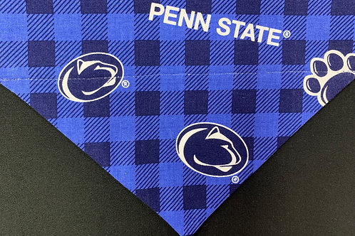 Penn State Buffalo Check