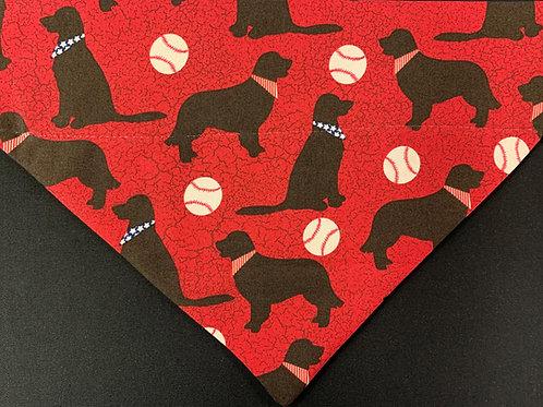 Labradors & Baseballs