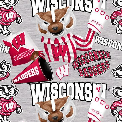 University of Wisconsin Badgers Mascot