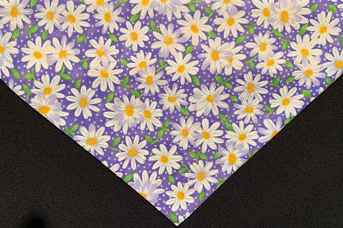 Daisies - Purple